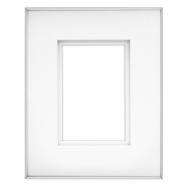 FINELINE 8X10 SILVER W 4X6 SHADOW MAT